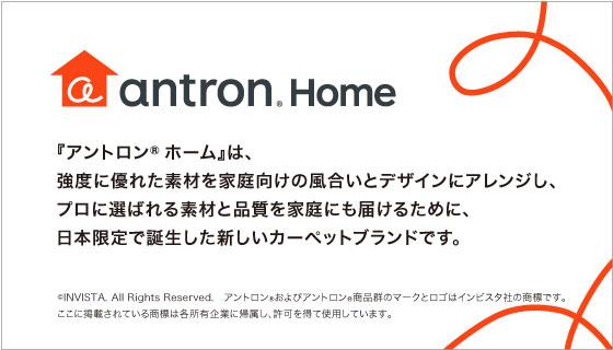 antron HOME